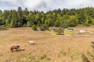 200 E Puddin Lane, Fortuna, CA 95540