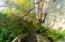 The Magdalena Zanone Estate Greenways Trail to Pierson Home