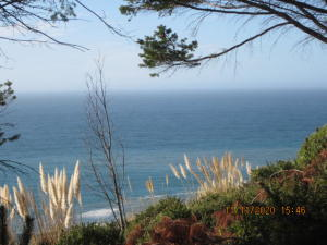 123 Eel Court, Shelter Cove, CA 95589