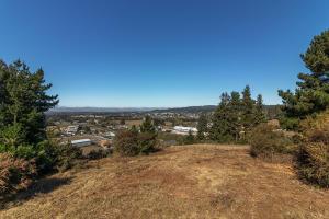±24 Acres Loop Road, Fortuna, CA 95540