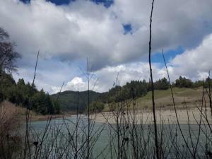 000 Twin Tree Road, Garberville, CA 95542