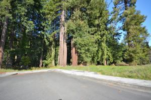 035 Black Bear Lane, Eureka, CA 95503