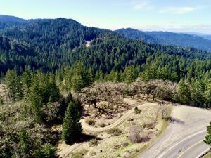 32010 Highway 36, Bridgeville, CA 95526
