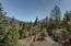 40 Osprey Lane, Burnt Ranch, CA 95527