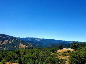3838 Island Mountain Road, Garberville, CA 95542