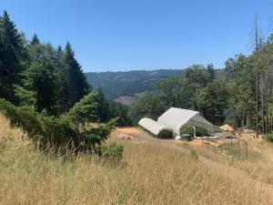 0000 Saber Tooth Road, Willow Creek, CA 95573