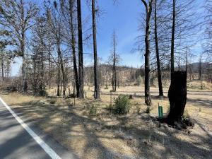 26601 Mad River Road, Ruth Lake, CA 95526