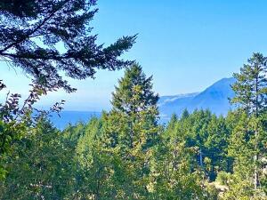 160 Vista Road, Shelter Cove, CA 95589