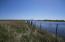 Waterfowl, Pheasants, Deer - 40 Acres of CRP