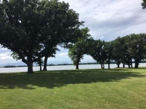 00 Loon Lake # 2