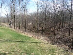 110 Meadow Ridge