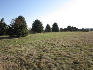 Homes For Sale at Lot 2 230th