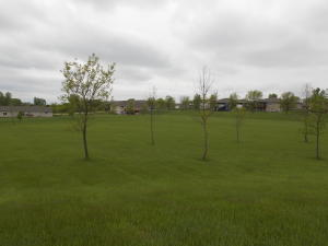 Homes For Sale at Lot 1 12th Street 1