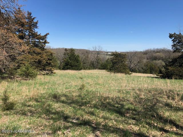 Photo of TBD CLAYWELL ROAD Russellville MO 65074