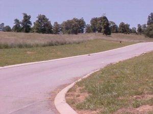 Lot 49 Chippewa Lane, Rutledge, TN 37861