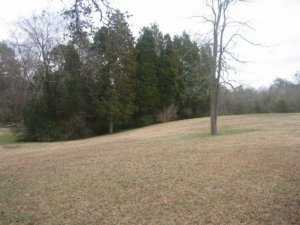 Pine Grove Rd, Knoxville, TN 37914