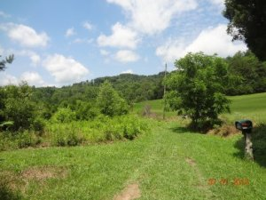 149 Freedom Way, Luttrell, TN 37779