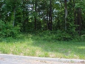 Lot 54 Cherokee Drive, Rutledge, TN 37861