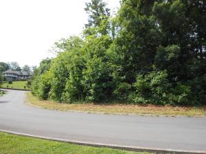 Sentry Ridge View Drive, Seymour, TN 37865