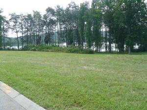 Lot 20 Shields Crossing Drive, Bean Station, TN 37708