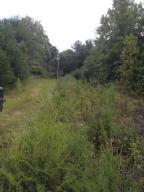 2.84 Ac Wasson Road, Ten Mile, TN 37880
