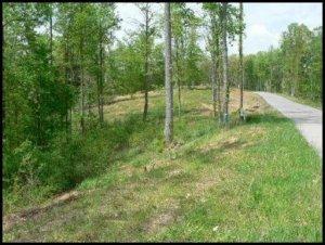 Highland Woods Way, 0, Powell, TN 37849