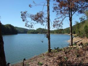 Lot 51 Mountain Shores Rd, New Tazewell, TN 37825
