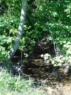 Creek at Back Boarder of Lot