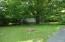 shaded backyard