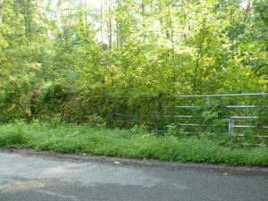 37.53 Acre Cupp Ridge Rd, New Tazewell, TN 37825