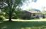 Tree shaded back yard