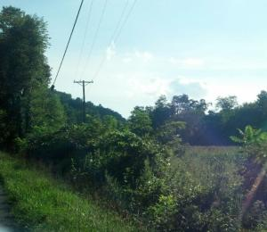 GRAINGER COUNTY-UNRESTRICTED FARM LAND 3 PARCELS AVAILABLE- RECENTLY SURVEYED- 1 TRACT HAS BARN ON IT-