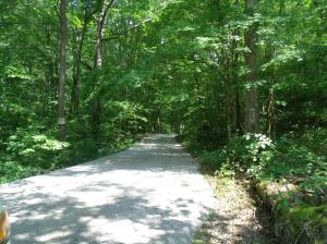 Mcgill Branch Lane, Heiskell, TN 37754