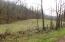 Jones Ridge Rd, Speedwell, TN 37870