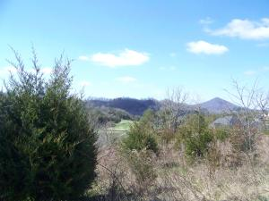 122 Wildwood Way, Tazewell, TN 37879