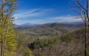 Bear Den Rd, Townsend, TN 37882