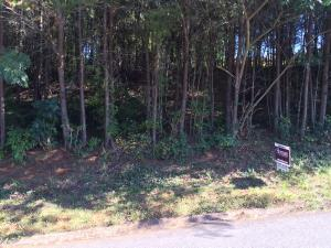 1055 Oakwood Estates Drive, Lenoir City, TN 37772