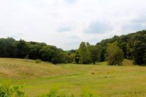 Total 62.68 Acres Available on 5 Lots
