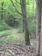 Carrs Creek Rd, Townsend, TN 37882