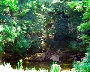 406 Hemlock Trail, Monterey, TN 38574