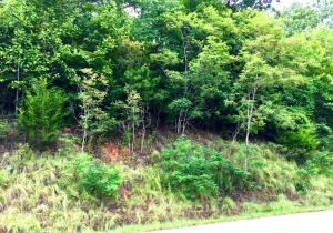 Lot 554 Whistle Valley Rd, New Tazewell, TN 37825
