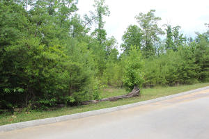 Lot 67 Smoky Cove Rd, Sevierville, TN 37876