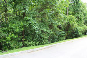 Lot 84 Smoky Cove Rd, Sevierville, TN 37876