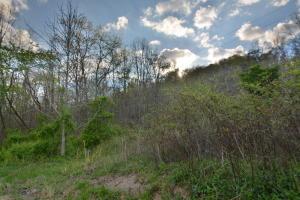L-9 Wolf Peak Lane, Heiskell, TN 37754