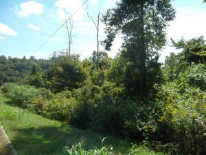 L-4 Wolf Peak Lane, Heiskell, TN 37754