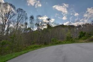 L-5 Wolf Peak Lane, Heiskell, TN 37754