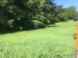 Sequoyah Rd, Andersonville, TN 37705