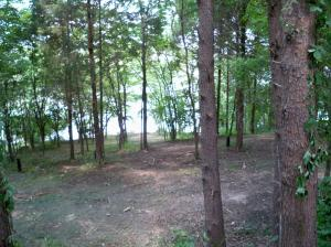 117 Oostagala Point, Loudon, TN 37774