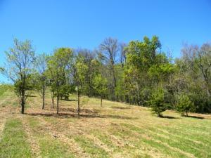0 Scenic View Drive, Talbott, TN 37877