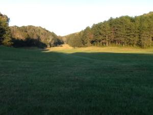 8922 Pickens Gap Rd, Knoxville, TN 37920
